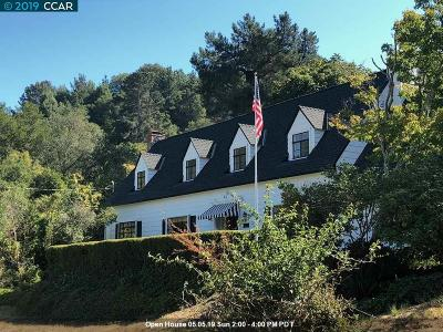 Orinda Single Family Home For Sale: 1 Sycamore Road