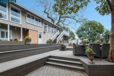 Danville Single Family Home For Sale: 98 Toyon Ter