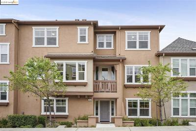 Dublin Condo/Townhouse For Sale: 3811 Branding Iron Pl