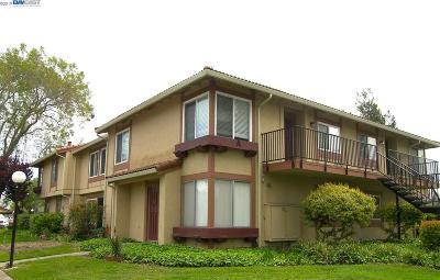 Union City Condo/Townhouse Back On Market: 4986 Bridgepointe Pl