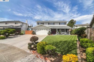 Newark Single Family Home New: 37648 Fuschia Ct
