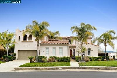 Single Family Home For Sale: 9514 Velvet Leaf Circle