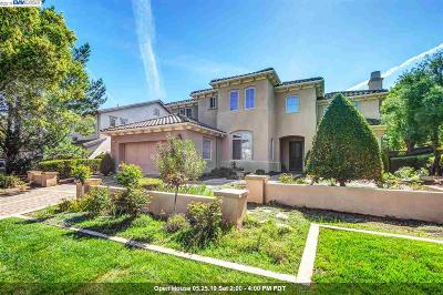 Pleasanton Single Family Home New: 2161 Pomezia Ct