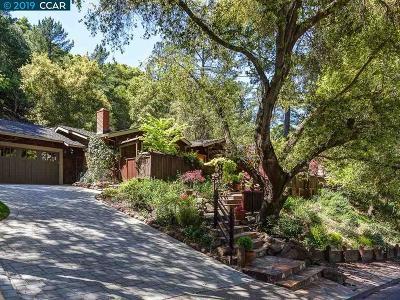 Orinda Single Family Home For Sale: 15 Easton Ct