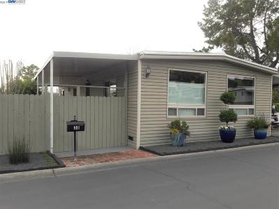 Concord Mobile Home New: 38 Terrace Drive