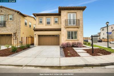 San Ramon Single Family Home New: 5161 Rowan Drive
