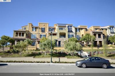 Dublin Condo/Townhouse New: 3497 Capoterra Way
