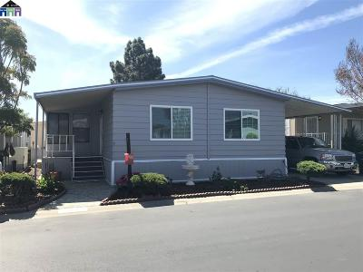 Hayward Mobile Home New: 972 Fall River Dr.