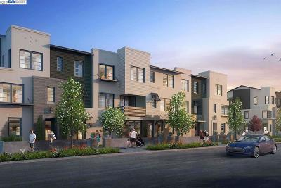 Condo/Townhouse New: 3586 Peralta Blvd.