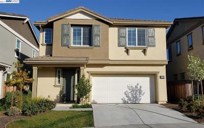 Alameda County Single Family Home New: 6024 Allium Pl