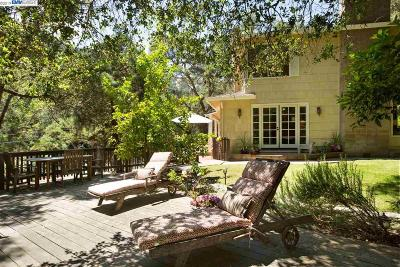 Dublin, Livermore, Pleasanton, Sunol, San Ramon Single Family Home For Sale: 1313 Kilkare Rd