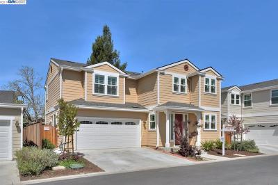 Pleasanton Single Family Home New: 305 Augustine Pl