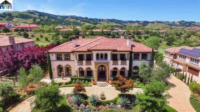Pleasanton CA Single Family Home New: $4,768,000