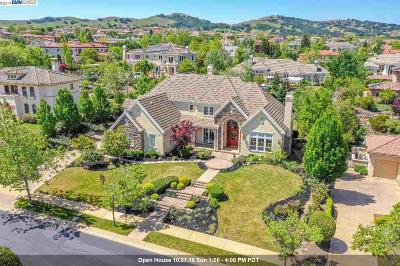 Pleasanton Single Family Home For Sale: 1952 Via Di Salerno