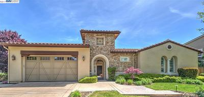 Pleasanton Single Family Home For Sale: 1459 Irongate Ct