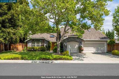 Walnut Creek Single Family Home For Sale: 710 Comanche Ct