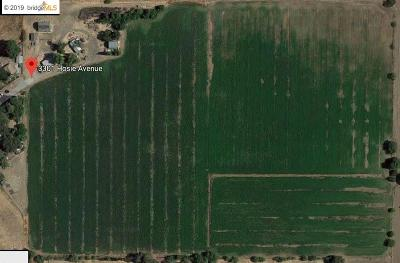 Byron, Knightsen Residential Lots & Land For Sale: 3300 Hosie Ave