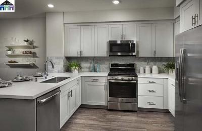 San Jose Condo/Townhouse For Sale: 5951 Sunstone #213