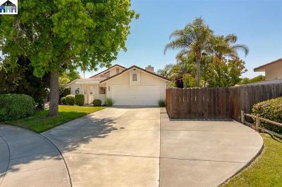 Tracy Single Family Home Price Change: 682 Saddleback Ct