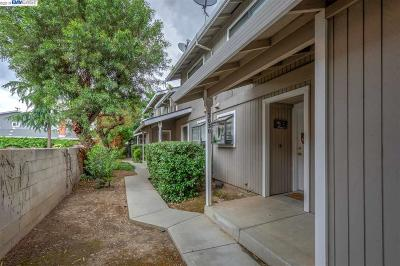 Livermore Multi Family Home For Sale: 3026 Gardella Plz
