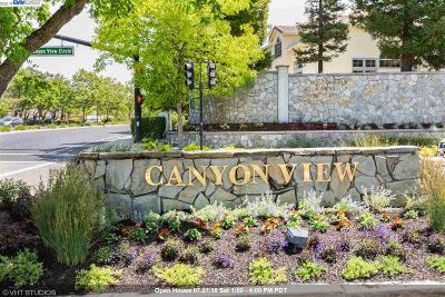 San Ramon Single Family Home For Sale: 141 Cortona Drive