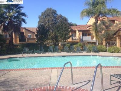 San Ramon Rental For Rent: 440 Bollinger Canyon #197