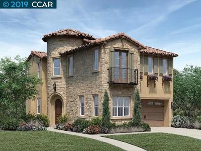 San Ramon Single Family Home New: 1200 Trumpet Vine Lane