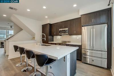 Oakland Condo/Townhouse New: 1510 Pullman Way