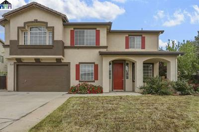 Tracy Single Family Home For Sale: 4594 Crapapple Ct