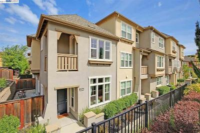 Dublin Condo/Townhouse For Sale: 3646 Branding Iron Pl