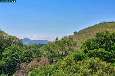 Moraga Single Family Home For Sale: 1267 Bollinger Canyon Road