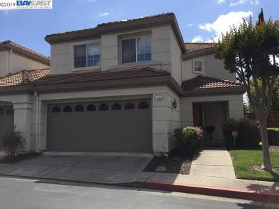 Contra Costa County Rental For Rent: 1060 Vista Pointe Cir