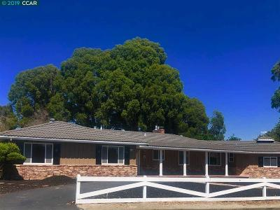 Castro Valley Single Family Home For Sale: 4738 Proctor Road