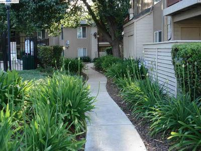 Antioch Condo/Townhouse Active-Short Sale: 2005 San Jose Dr #235