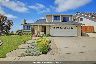 Castro Valley Single Family Home For Sale: 5940 Castlebrook Dr