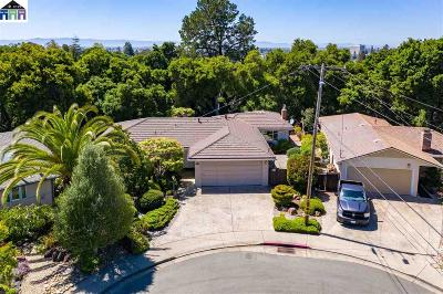 Hayward Single Family Home For Sale: 1723 Germaine Court