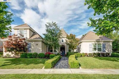 Pleasanton Single Family Home For Sale: 1131 Laguna Creek Ln