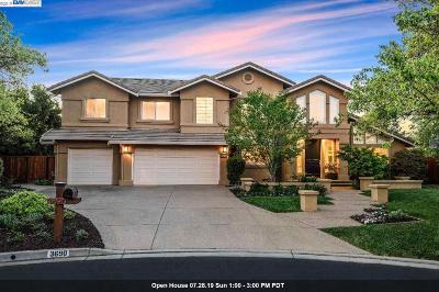 Pleasanton Single Family Home For Sale: 3690 Locke Ct