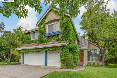 Livermore Single Family Home For Sale: 635 Laurelwood Ct