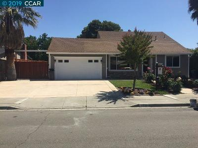 Pleasanton Single Family Home For Sale: 7030 Valley Trails Dr