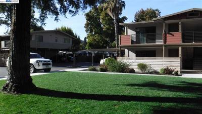 Alamo Rental For Rent: 20 Casa Maria Ct #C
