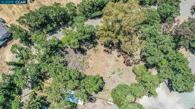 Pleasanton Residential Lots & Land For Sale: 970 Happy Valley Rd