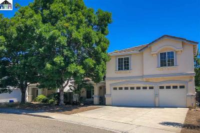 Antioch Single Family Home For Sale: 3757 Killdeer Dr