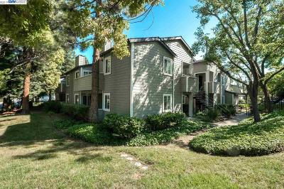 Oakland Condo/Townhouse Price Change: 645 Canyon Oaks Drive #B