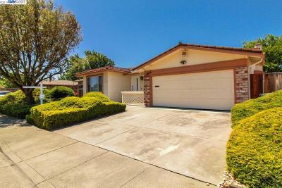Pleasanton Single Family Home For Sale: 4644 Herrin Way