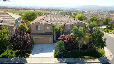 Dublin Ranch Single Family Home For Sale: 5851 Annandale Way