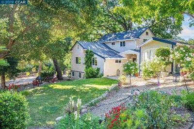 Sunol Single Family Home For Sale: 367 Kilkare Rd