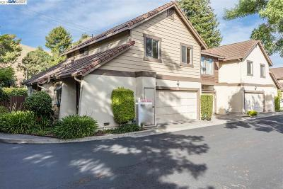 Fremont Condo/Townhouse New: 36112 Potel Common