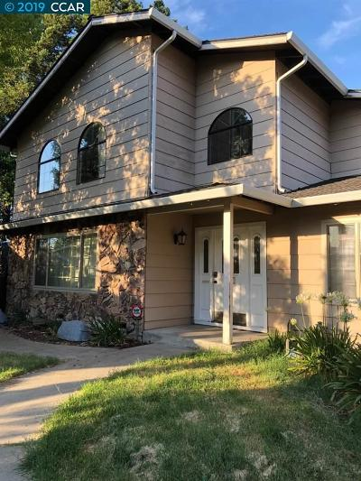 Concord Single Family Home New: 3789 Via Del Lisa Ct