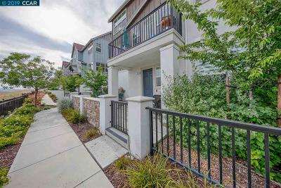 Dublin Condo/Townhouse For Sale: 3871 Camino Loop